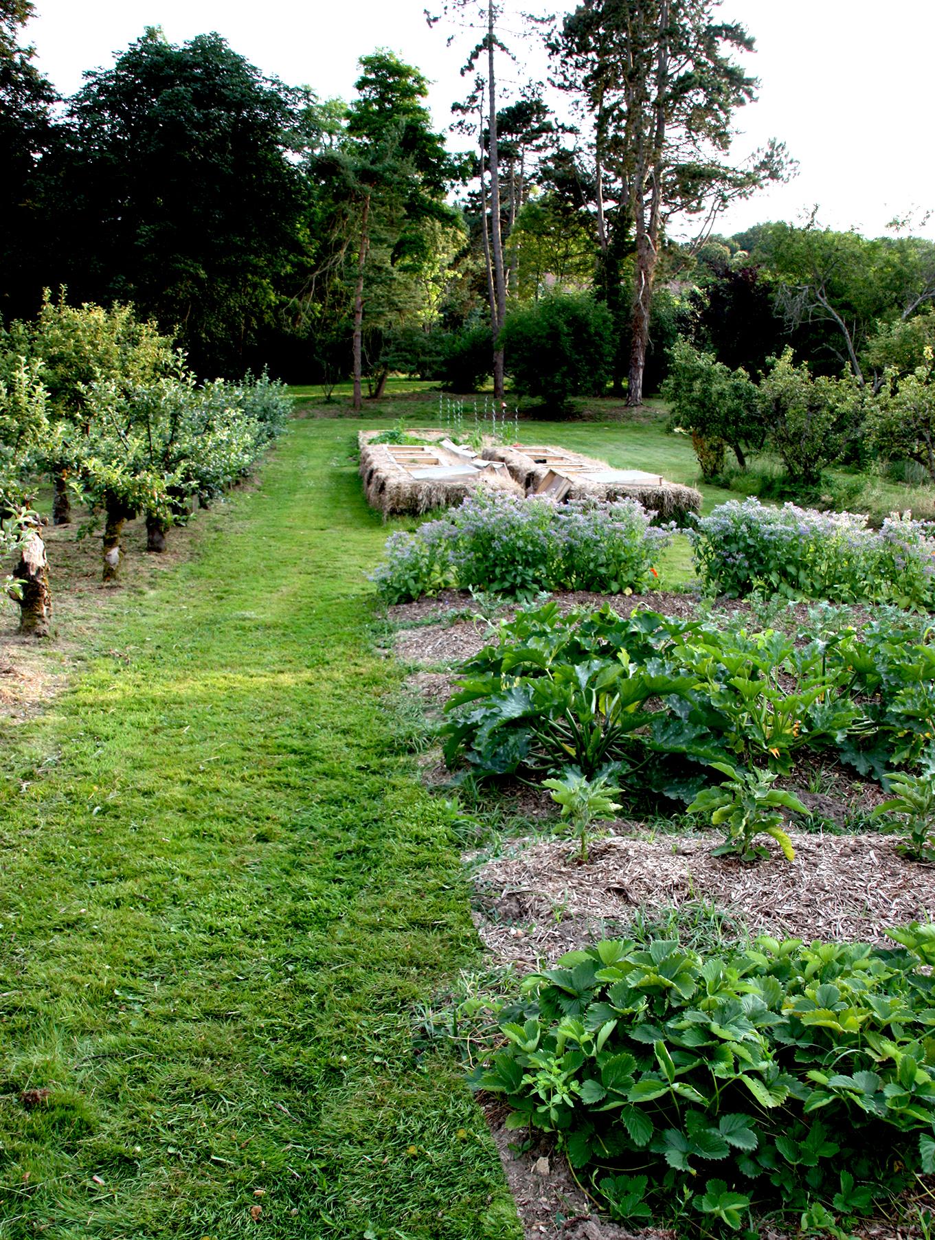 Buttes de permaculture