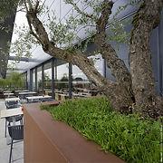 Terrasse de restaurant face aux Pyrénnées
