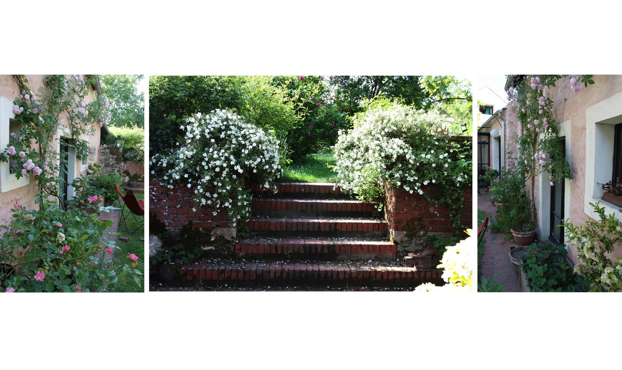 Escalier de la cour au jardin