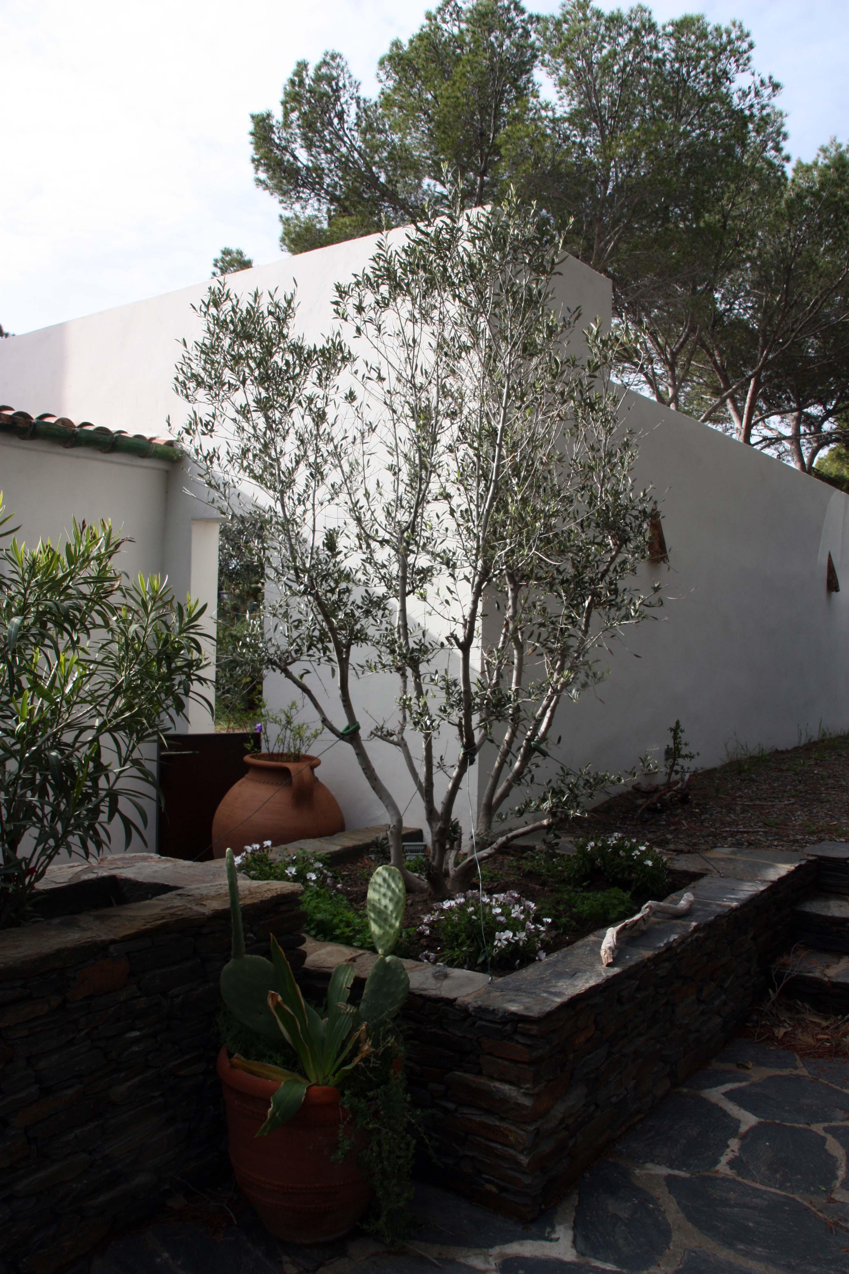 jardinières_en_pierre