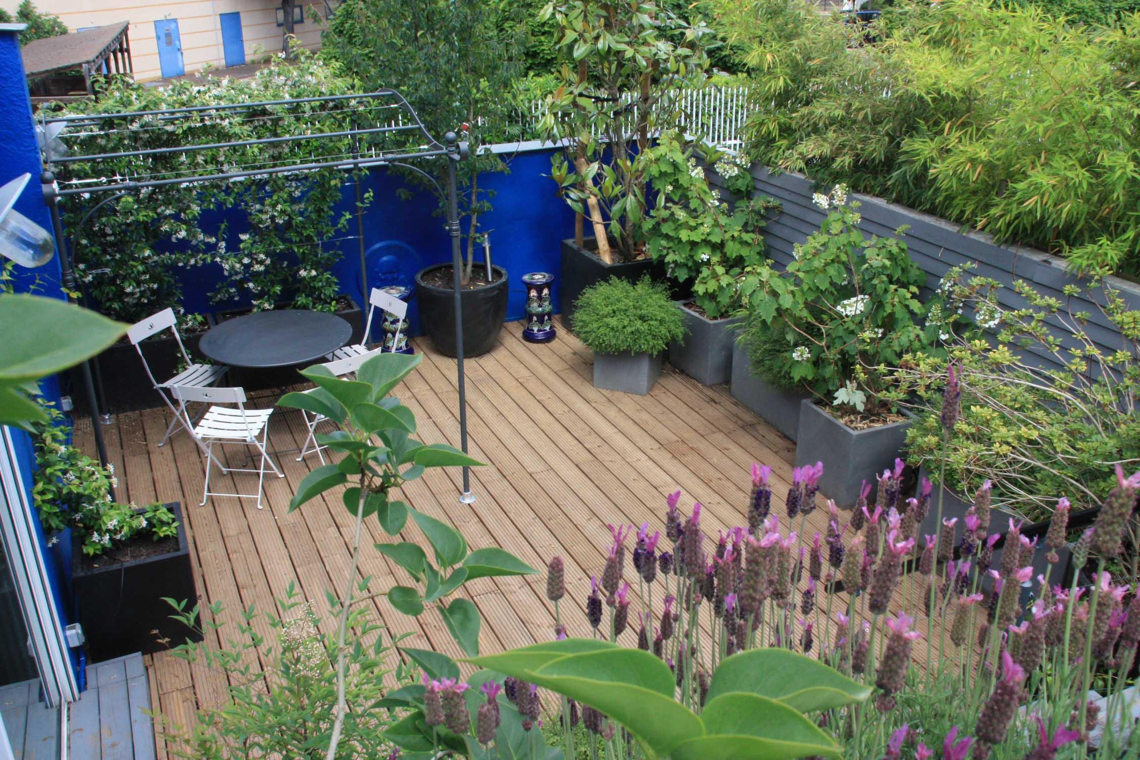 vue de la terrasse haute- jasmins et lavandes