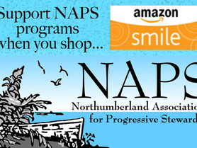 Help Local Non-Profits When You Shop Online