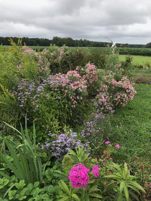 Shiloh School Native Plant Garden
