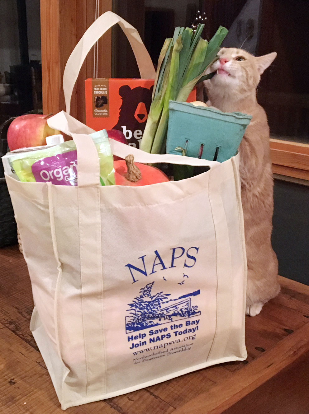 NAPS reusable grocery bag