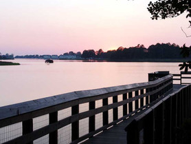 Join the Clean-Up Team at Belle Isle, Aug. 17