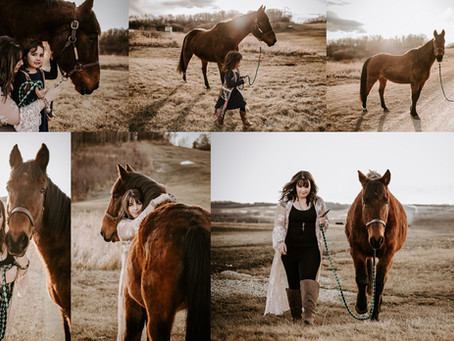 Red Deer Lifestyle Photographer | Courtney
