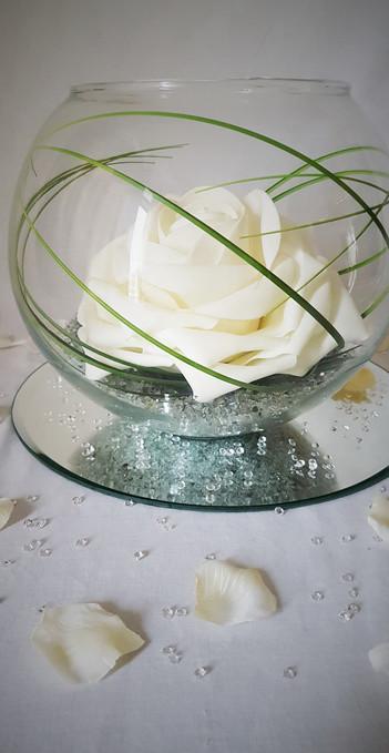 Fish Bowl White Rose