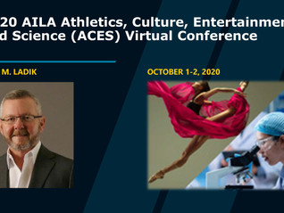Steven Ladik Speaks At Virtual AILA Conference