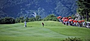 golf-2704598_1920 (4).jpg