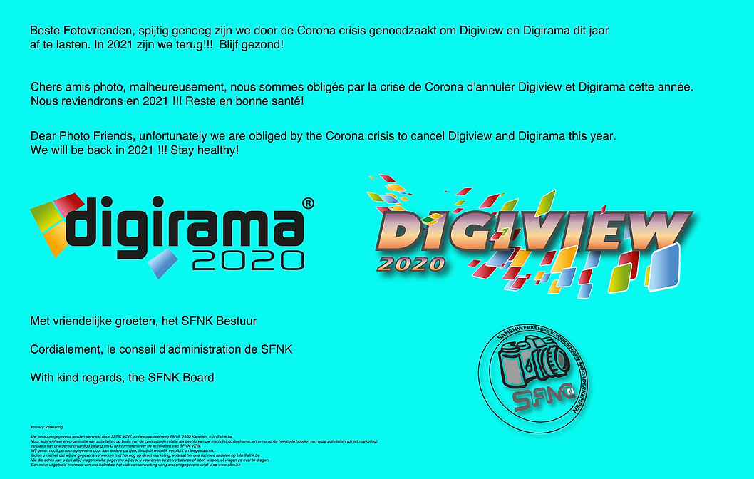 Digiview - Digirama 2020 copy.jpg