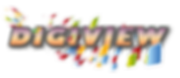 digiview logo .png