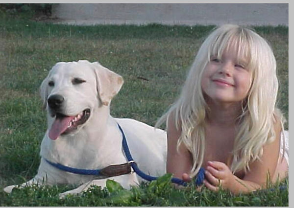 Fix Labs Labrador retriever puppy and child laying in grass