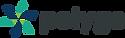 polyga-logo-gradient.png