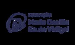 fmscv logo.png