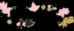 Homeostasie Photographie Accueil Logo