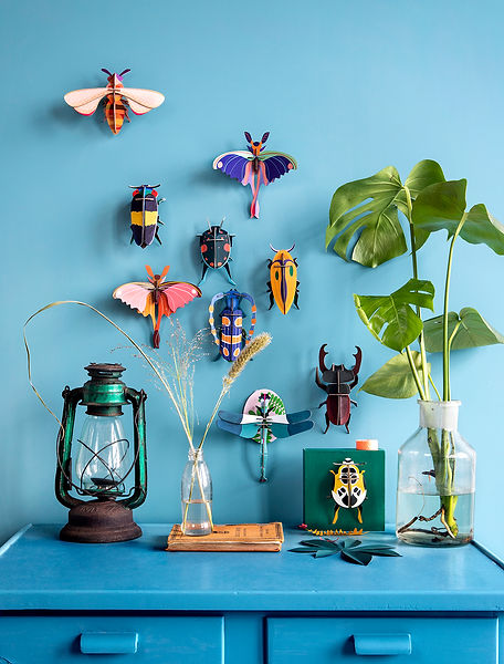 insects-overview-ambient.jpg