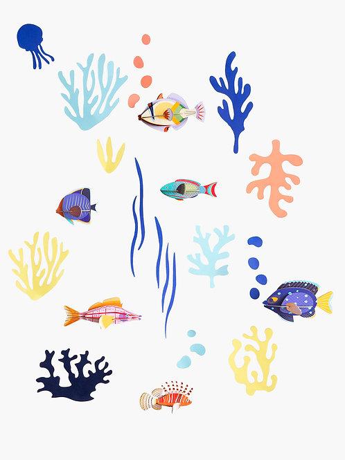 Fish Hobbyist | Studio ROOF