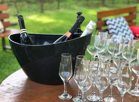 Enoturismo: 3 dicas em Garibaldi RS para os apaixonados por vinho