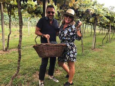 Tour Fascínios da Vindima em Bento Gonçalves- experiência de colher a uva e fazer a pisa.