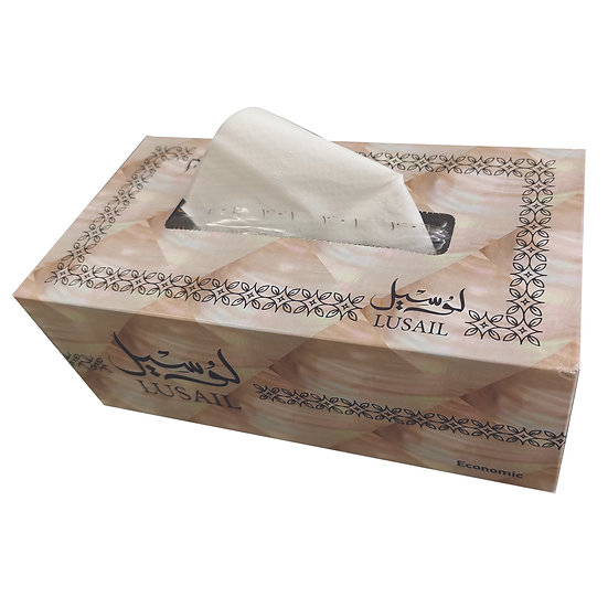 LUSAIL Economic Facial Tissues