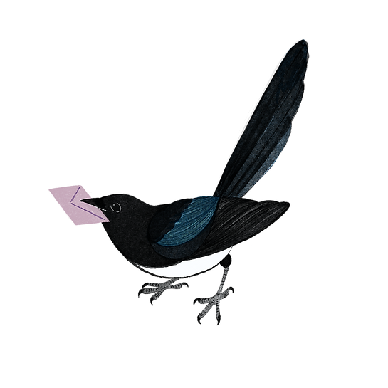 Watercolour style image of a magpie standing with a pink evelope in it's beak