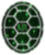 TurtleNetwork_TN_Logo.png