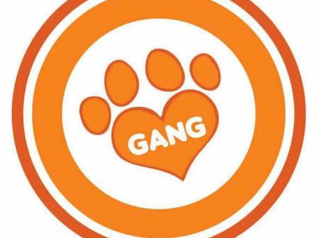 Venha ajudar a Gang dos Patinhas com a Romero Training !