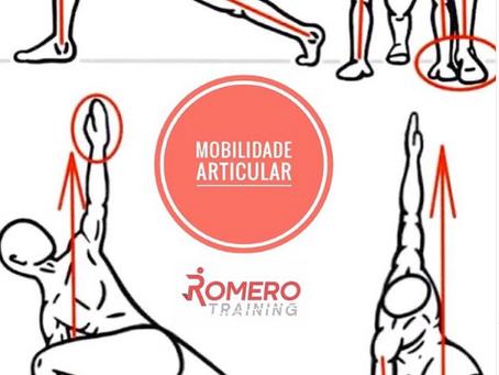 Mobilidade articular