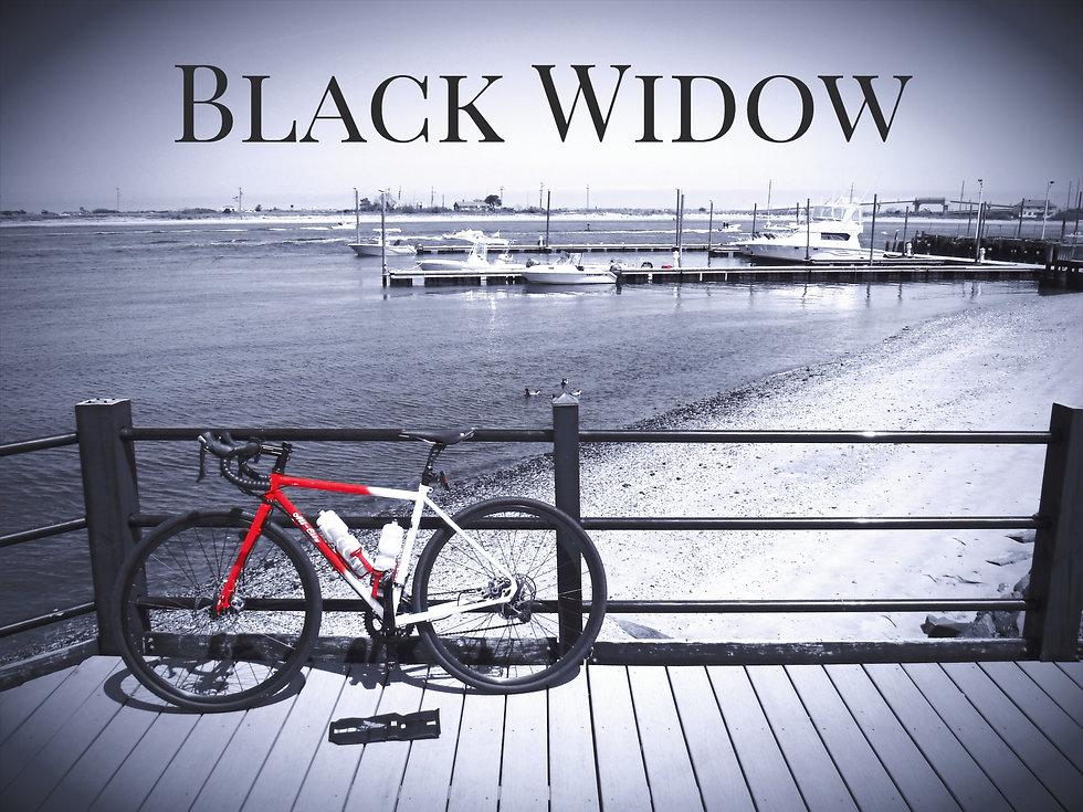 JET Roll MTB Black Widow