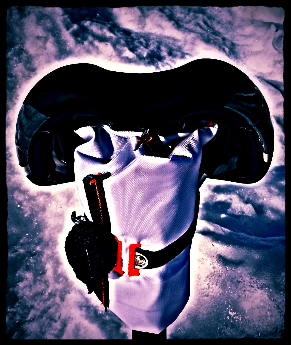 JET Roll Hypersonic X-15