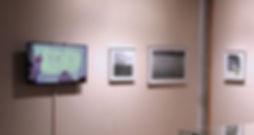 E Hogan at Yale installation shot 4 webs