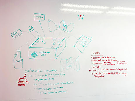Whiteboard skech of the subscription box idea