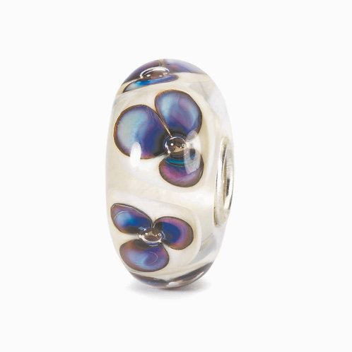 violette avorio  TGLBE-10168