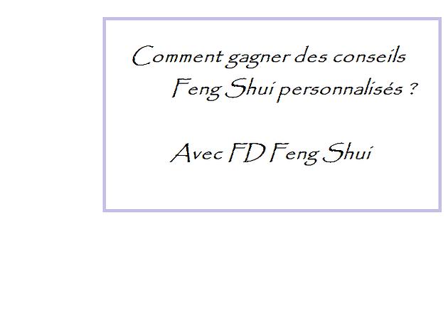 Comment gagner des conseils personnalisés en Feng Shui ? | FD Feng ...