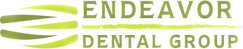 endever Logo.png
