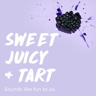 purastill_IG_flavor_blackberry_122118.jp