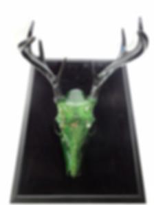 Canada, Monika Stanieski Painting, DEER HILL , Entire Deer Hill Deer Skull