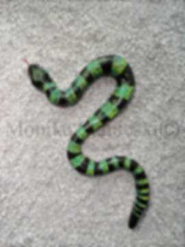 BEAUTY SNAKE - 600 - DOUBLE WATERMARKED.
