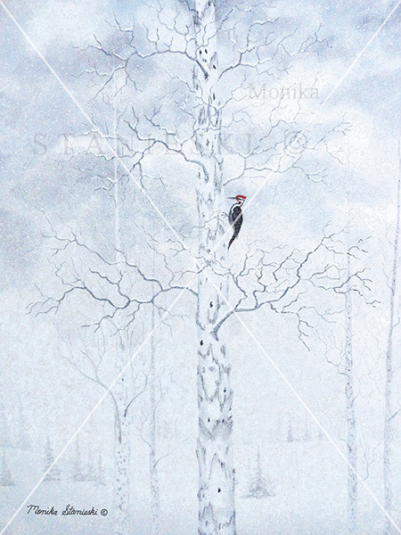 Canada,Monika Stanieski Painting, LONER QUIET, A Pileated Woopecker on a Birch Tree in a Snow Fall