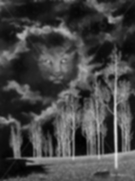 Canada, Monika Stanieki Painting, DANDYLION - Black and White, Black and White Night Landscape with a Lion Face in the Sky