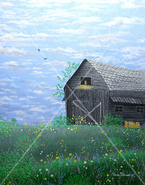 Canada, Monika Stanieski Painting, SUMMER DAY, Barn on a Wildflower landscape