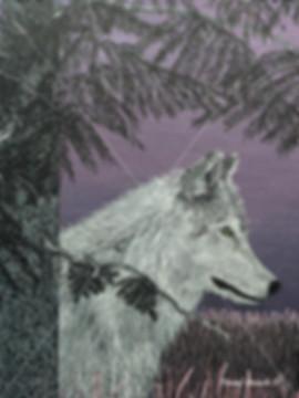 Canada, Monika Stanieski Painting, DUSK, A White Wolf sitting under a Pine Tree on a Mauve Landscape