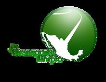 Programa_Transporte_Limpio.png