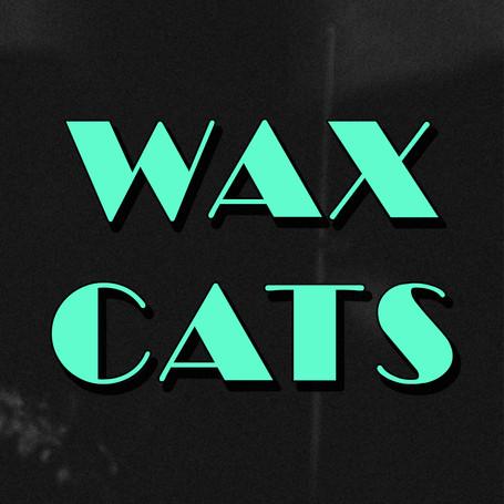 WAXCATS_DISCO001.jpg