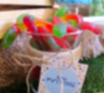 and Candy buffet for our Dinosaur themed first birthday party, candy buffet sydney, dessert table, dessert table Sydney, kids birthday party ideas, event styling