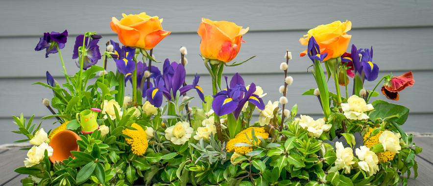 Garden design update front facing.jpg