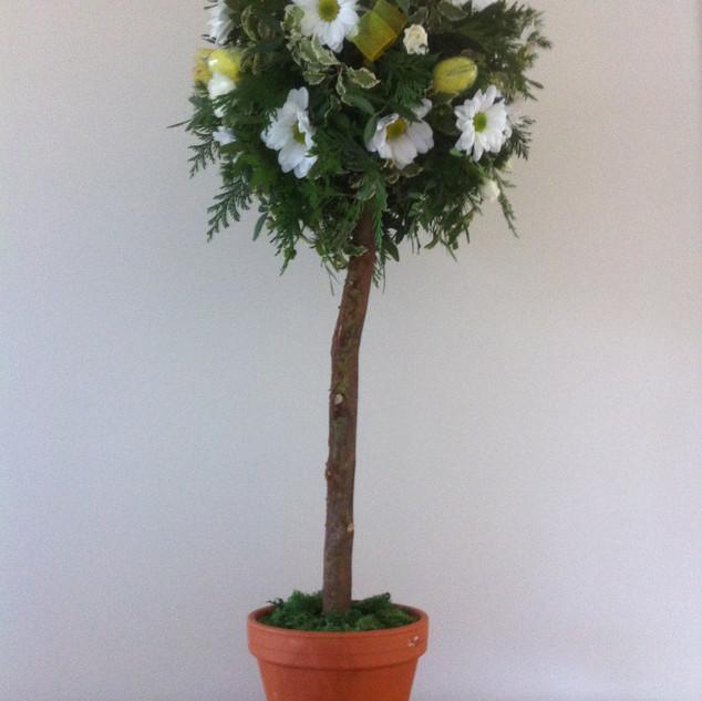Spring topiary tree