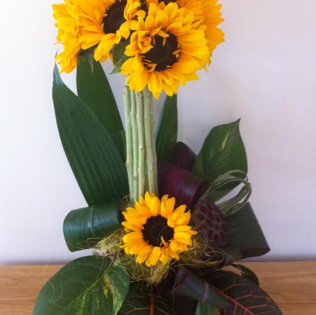 Sunflower topiary design
