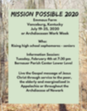Mission trip poster final 2020.png