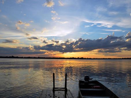 Descubra a Amazônia: Algumas dicas e informações.